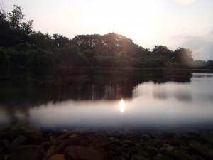 多摩川 早朝散策、2012夏の思い出