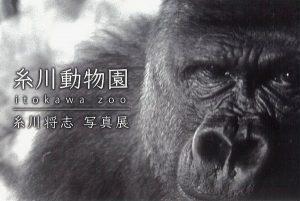 【糸川動物園 糸川将志写真展】