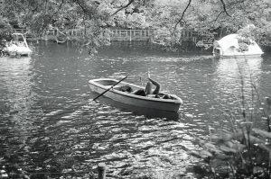 銀塩フィルムとフィルムカメラの話